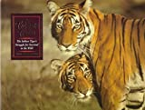 img - for A Tiger's Tale: The Indian Tiger's Struggle for Survival in the Wild book / textbook / text book