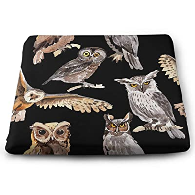 Tinmun Square Cushion, Sky Bird Owl Pattern Wildlife Large Pouf Floor Pillow Cushion for Home Decor Garden Party: Home & Kitchen