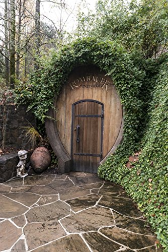 """St. Helena, CA - Photo - Entrance to one of the wine-cellar """"caves"""" at the Rombauer winery in California's Napa Valley - Carol Highsmith"""