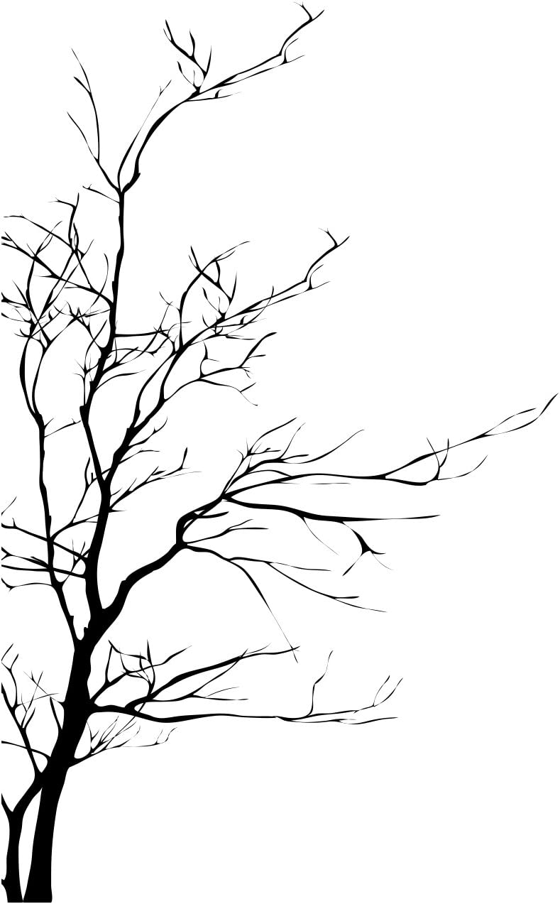 """Stickerbrand Nature Vinyl Wall Art Bare Tree Branch Wall Decal Sticker - Black, 72"""" x 42"""". Easy to Apply & Removable."""