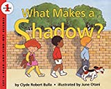img - for What Makes a Shadow? (Let's-Read-and-Find-Out Science 1) book / textbook / text book