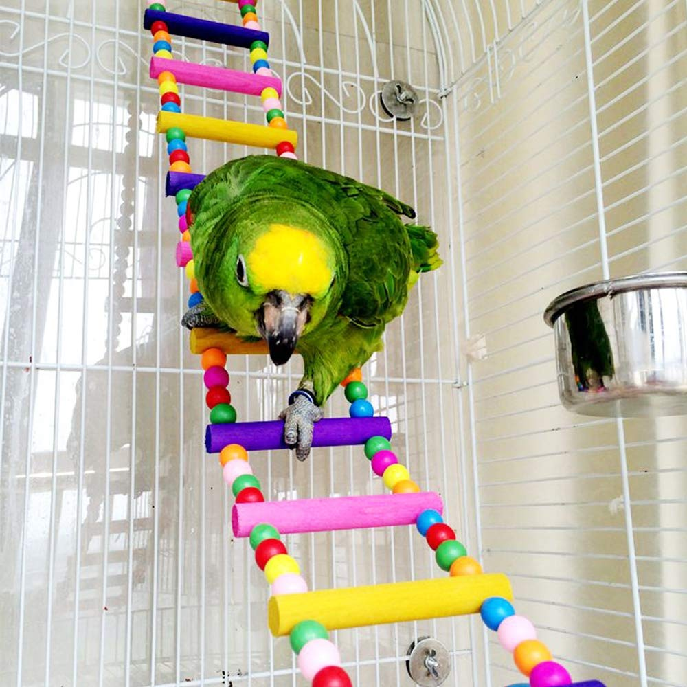 OTENGD Lente de pájaros Juguetes de Loros Accesorios de Jaula para ...