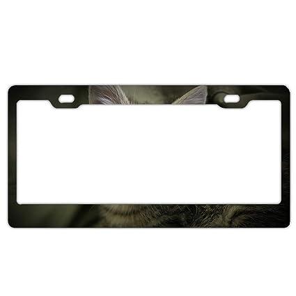 Amazon.com: Animal Cats Aluminum Polish Mirror License Plate Frame ...