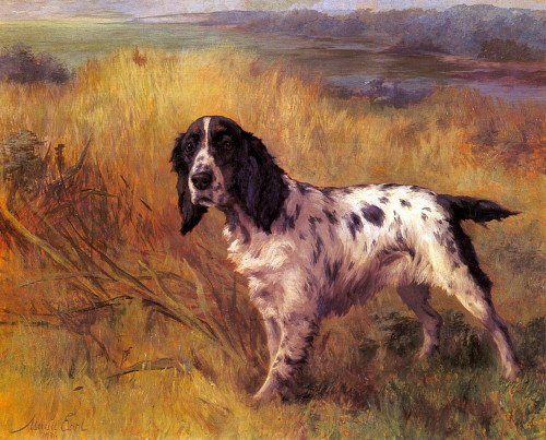 1936~Maud Earl~ English Setter Puppy Dog on Point in Field~6 pack NEW Matte Vintage Picture Large Blank Note Cards with Envelopes (English Setter Note Cards)