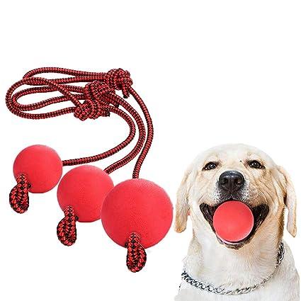 NewCreating Pelota de Cuerda para Perro, 3 Unidades de Bola en una ...