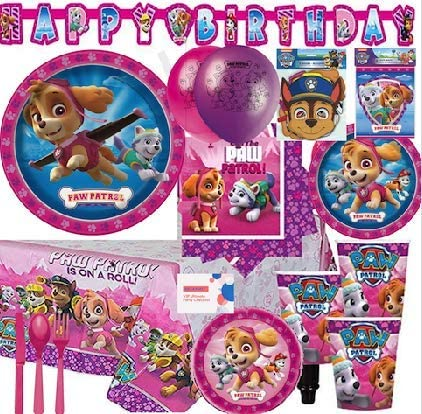 Paw Patrol Puppies Skye Napkins Lunch Dinner Party Favors Birthday 48 Pieces Amscan