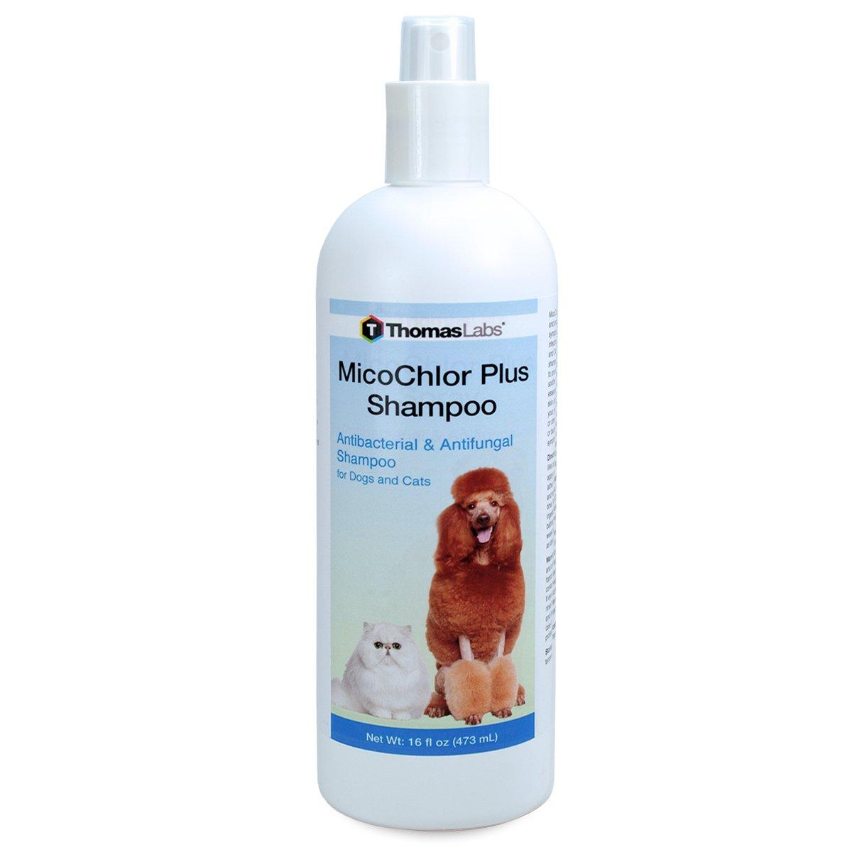 Amazon.com: Thomas Labs micochlor Plus Champú: Mascotas