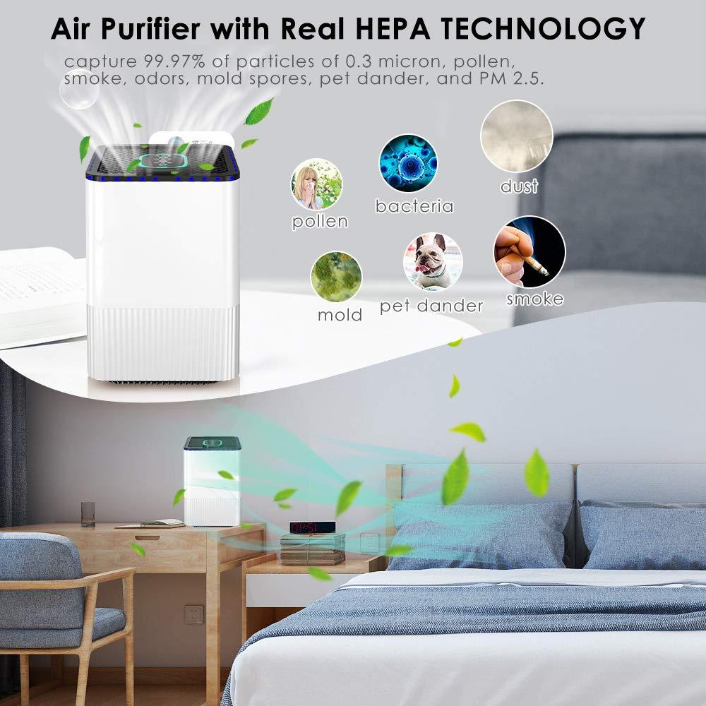 Haus Luftreiniger Hepa Aktivkohlefilter,Luftreiniger mit HEPA