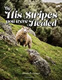 By His Stripes You Were Healed