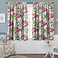 """Chaneyhouse Watercolor Thermal Insulating Blackout Curtain Garden Pattern with Apple and Peach Tree Branches Japanese Botany Foliage Patterned Drape for Glass Door 55"""" W x 39"""" L Green Pink Cream"""