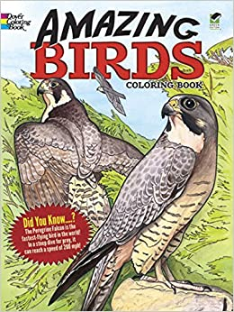 Amazing Birds Coloring Book Dover Nature Ruth Soffer 9780486447964 Amazon Books