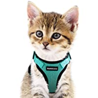 Cat Harness, Escape Proof Small Dog Vest Harness, Adjustable Soft Mesh Kitty Harness for All Weather Walking, Padded Vest with Metal Leash Clip for Small Pets Puppies Kittens Rabbits, Green