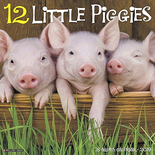 (12 Little Piggies 2019 Wall Calendar)