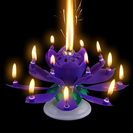 Romantic Music Birthday Candle Two Layers With 14 Small Candles Musical Lotus Rotating Happy Flower Purple Amazonca Home Kitchen