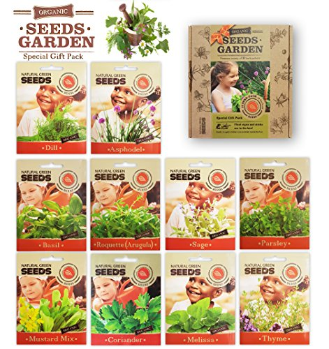 HERB SEEDS, 10 SEED PACKS, 100% CERTIFIED ORGANIC Non GMO - Ideal For Indoor and Outdoor Growing, Culinary Herb Assortment- No Gardening Experience Required Popular varieties of Easy to Grow (10 Seed Pack)