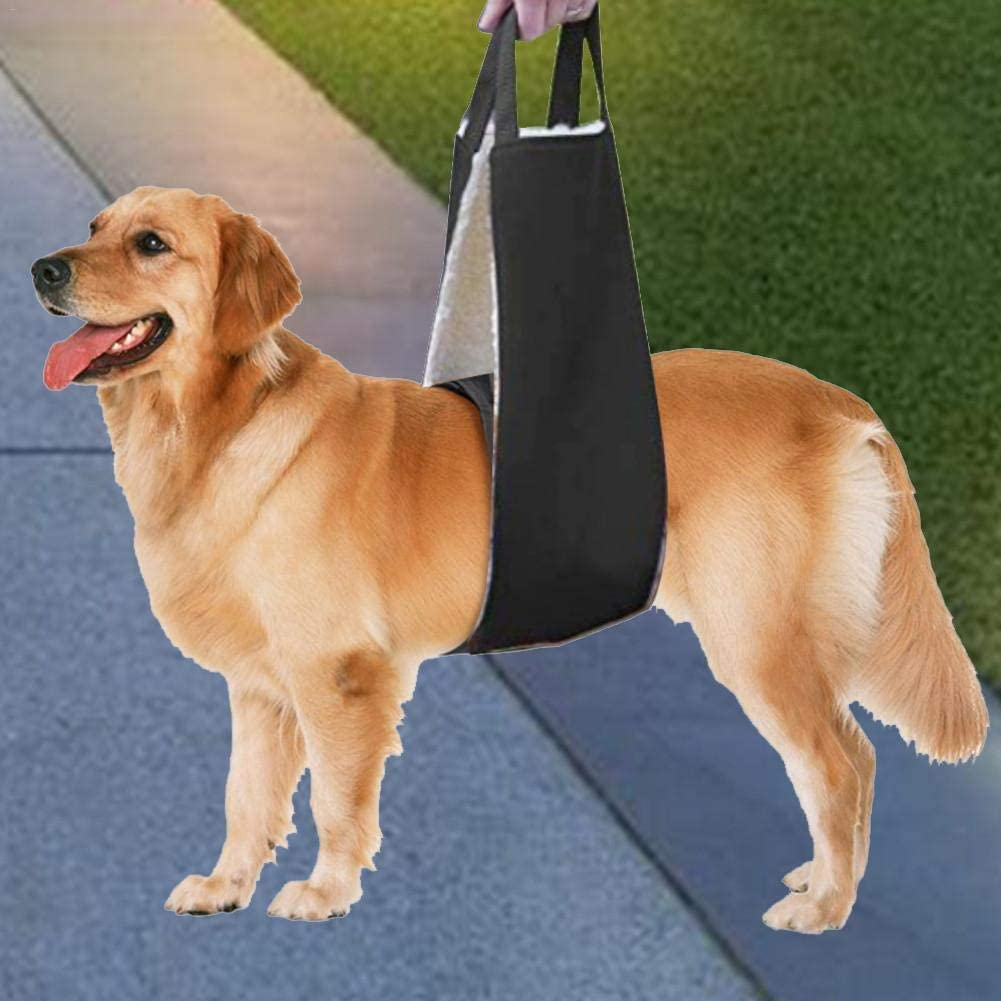 Lizefang Cinturón Auxiliar para Perro Mascota Piernas Ajustables ...