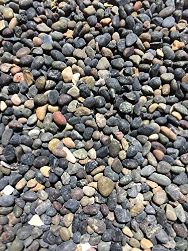 Garden Bloom Authentic Mexican Beach Pebbles 1/4 Inch - Perfect for Succulents, Aquariums, Terrariums, Fairy Gardens, All Landscape Applications