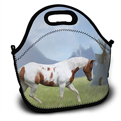 6f4c95356189 Amazon.com - Sunmoonet Lunch Tote Bag, Byo Lunch Bags, Thermos Fresh ...