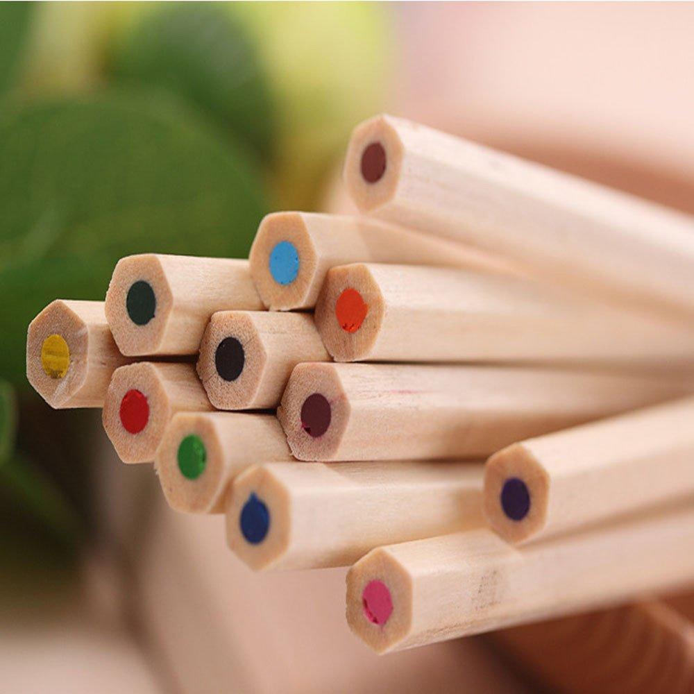 BGOO 12 Color Small Pencil Painting Pen Color Lead Pencil Stationary Set Art Set for Children Adults
