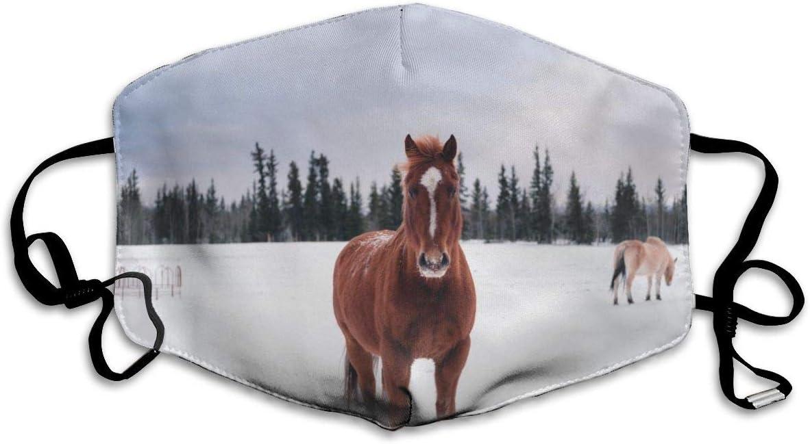 OUYouDeFangA - Máscara bucal de invierno para caballo marrón, unisex, lavable, segura, 100% poliéster, cómoda y transpirable, media cara