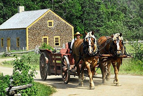 LAMINATED POSTER Old Horse Transportation Horse-drawn Cart Wagon Poster -