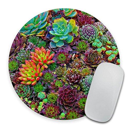 Succulent Print Circle Mouse Pad - Mousepad - Coworker Teacher Gift - Colorful Succulents