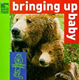 Bringing Up Baby: Wild Animal Families (Animal Planet)