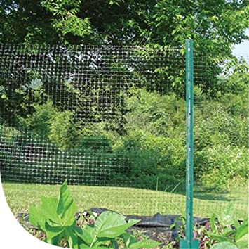 Amazoncom Dewitt DDF7100 Deer Fence Netting 100 Feet Length