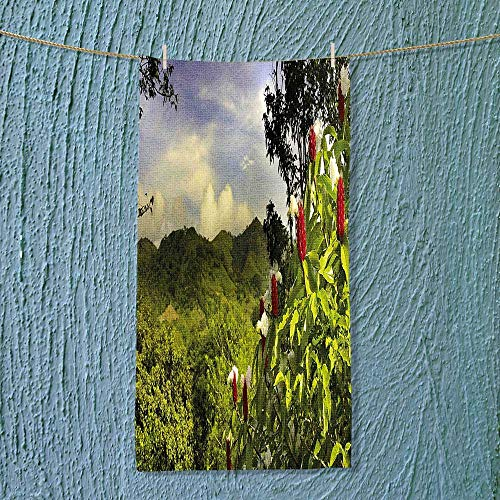 (SOCOMIMI Exercise Towel Scenery Costa Rica Countryside Greenery Tropic Accents Botanical Green Red Violet Blue Machine)