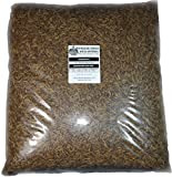 44 Lbs Tasty Worms Bulk Freeze Dried Mealworms Approx. 704,000ct