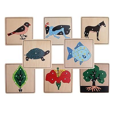 MagiDeal Set/8pcs Puzzle en Bois Plante Animale pour Enfants Education Apprentissage Puzzles Jouets