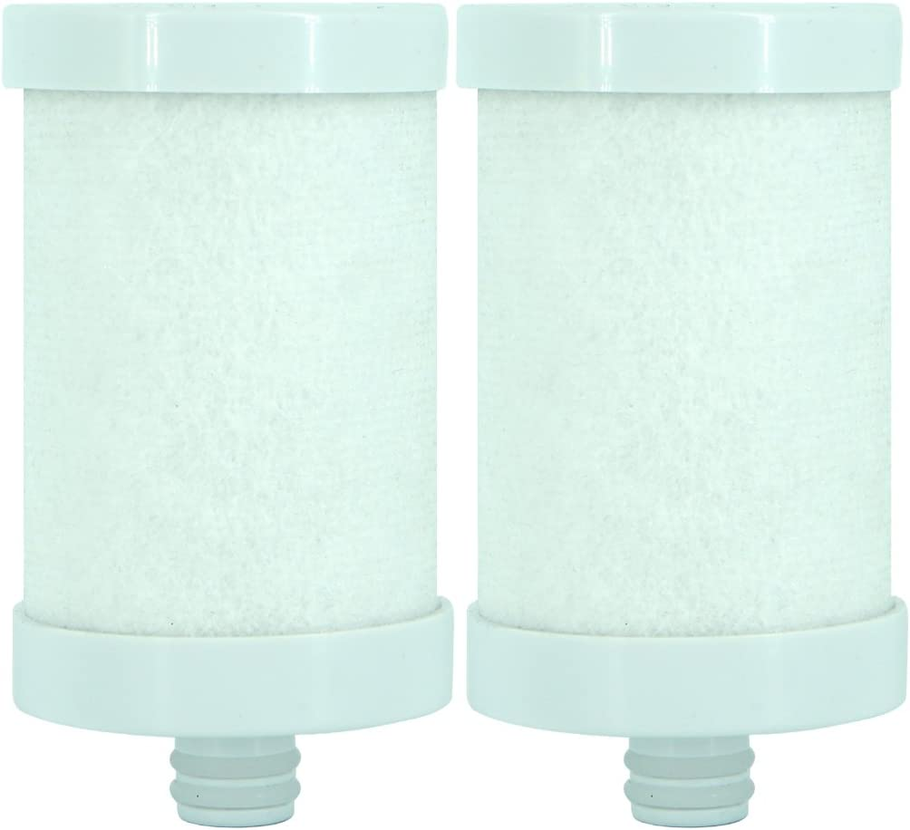Engdenton Stainless Steel Water Filter Cartridge Replacement, Kitchen Filtration(for Stainless Steel Filters ASIN: B07DCMD991) (2 Pack)