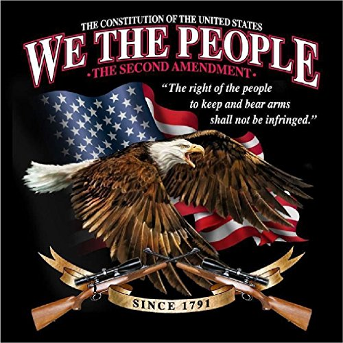 We The People Constitution 2Nd Amendment Tee Shirt Size L Adult T283 Tshirt (Ladies Police Tie Front Shirt)
