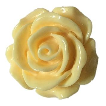 Photos de roses anal