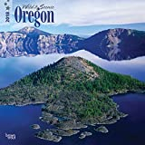 Oregon, Wild & Scenic 2018 12 x 12 Inch Monthly Square Wall Calendar, USA United States of America Pacific West State Nature (Multilingual Edition)