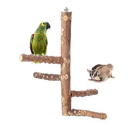 Amakunft Parrot Perch Madera, Loro de la Naturaleza Escalada ...