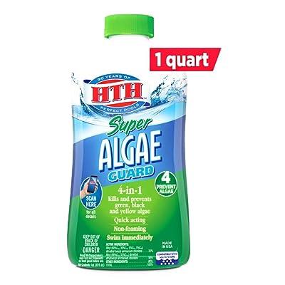 HTH 67032 Super Algae Guard Swimming Pool Algaecide Cleanser, 1 qt : Garden & Outdoor