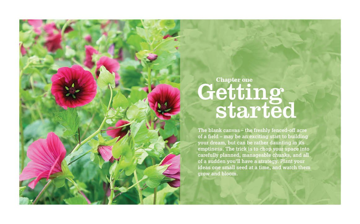 The Flower Farmers Year How To Grow Cut Flowers For Pleasure And
