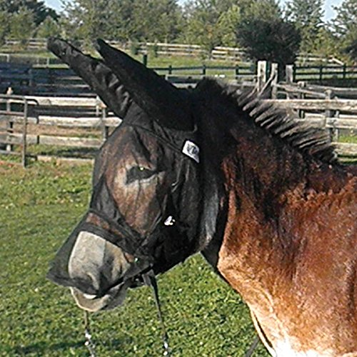 Cashel Quiet Ride Fly Mask with Ears and Long Nose for Mule/Donkey - Size: Horse (Mule Saddle Trail)