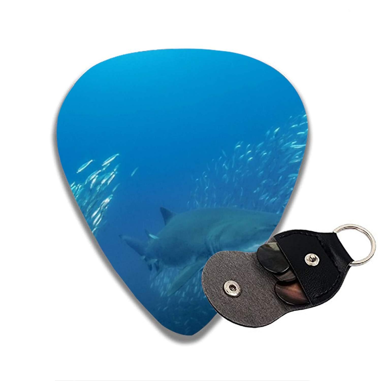 Púas de guitarra de tiburón de arena que atraviesa una escuela de ...