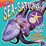 Sea-Sational, Allyson Kulavis, 1935703552