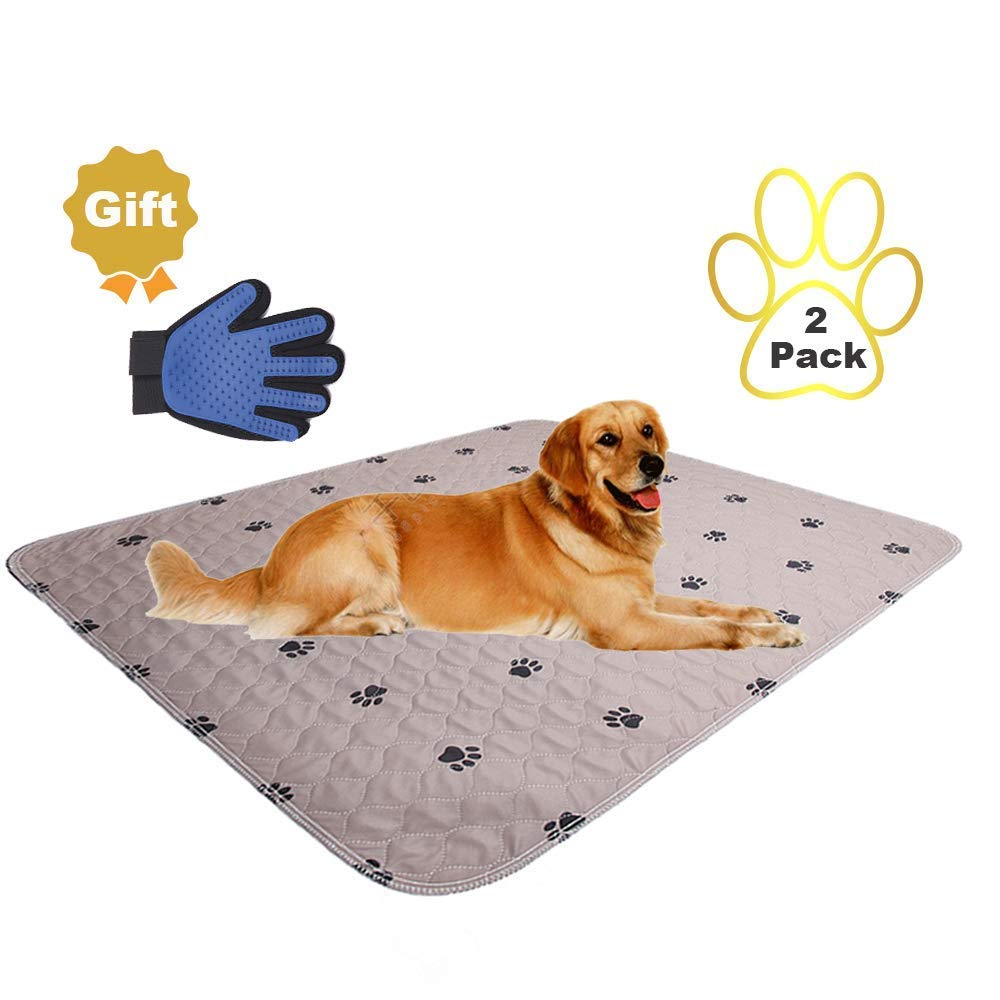 SincoPet Reusable Pee Pad + Free Puppy Grooming Gloves/Quilted, Fast Absorbing Machine Washable Dog Whelping Pad/Waterproof Puppy Training Pad/Housebreaking Absorption Pads (2 Pack (48''x60''), Brown) by SincoPet