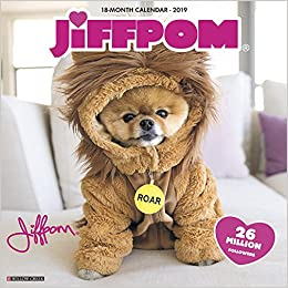 jiff the pomeranian 2019 wall calendar dog breed calendar