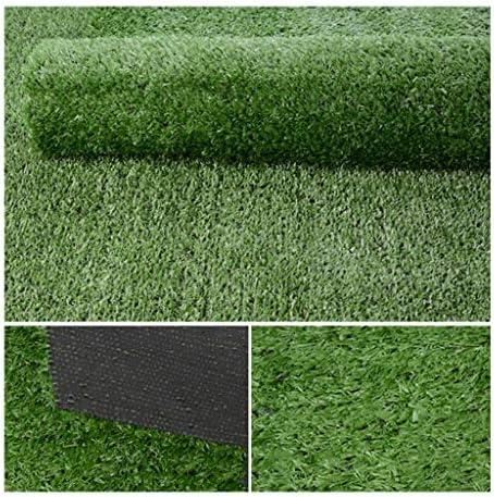 XEWNEG 庭の暗号化の人工的な草の芝生、屋内/屋外の装飾のために適した杭高さ15mm、柔らかく、快適なシミュレーションのカーペットのマット、 (Size : 2x5M)
