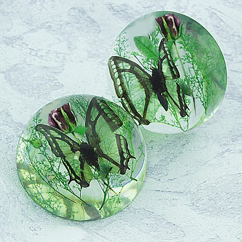 Lucite Dome (Real Butterfly Half-dome Desktop Decoration)