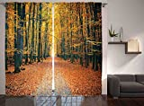 Ambesonne Fall Trees Curtains, Romantic Autumn Alley in The Woods, Window Drapes 2 Panel Set For Living Room Bedroom, 108 W X 84 L Inches