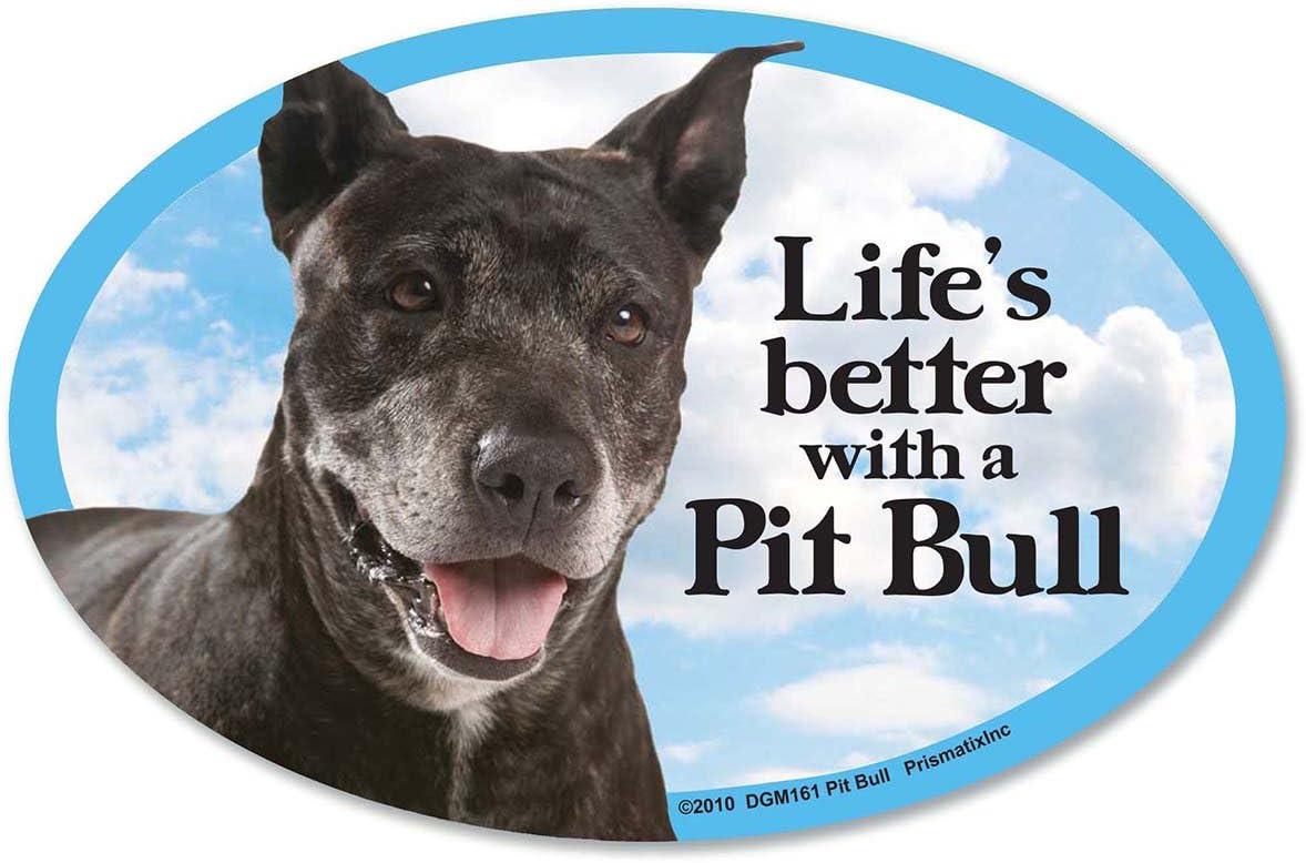 GIANT SIZE!! Dog Bone Magnet: I Love My Pit BullCars Refrigerators Trucks