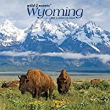 Wyoming Wild & Scenic 2020 12 x 12 Inch Monthly Square Wall Calendar, USA United States of America Midwest State Nature