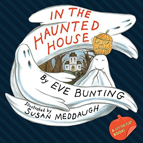 In the Haunted House Touch & Feel Lift-the-Flap Book -