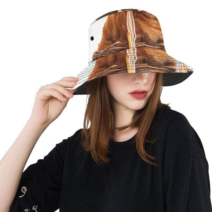 Raya Gato Sombrero Divertido Nuevo Verano Unisex Algodón Moda Pesca Sol  Sombreros para niños 41500295242